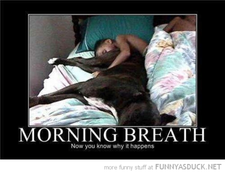 funny-dog-kid-ass-face-morning-breath-pics